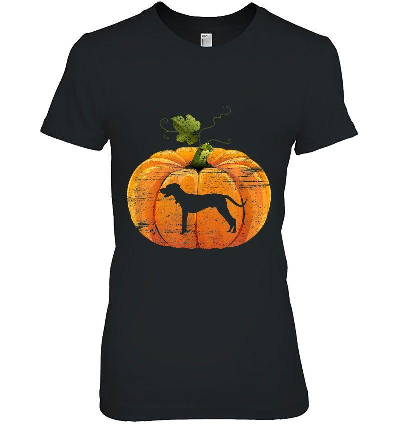 Pumpkin Dog Halloween Hoodie