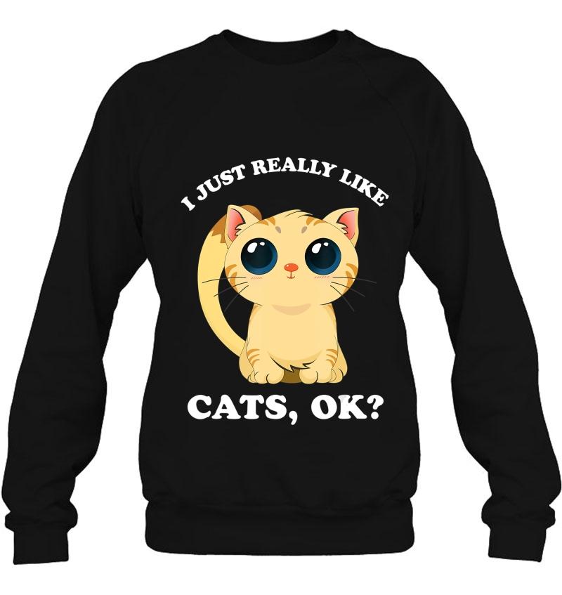 My Spirit Animal Is a Cat V-Neck T-shirt Cute Kitty Funny Kitten Tee